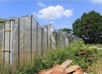 Thumbnail 5 bed farmhouse for sale in Staplehurst Road, Marden, Tonbridge