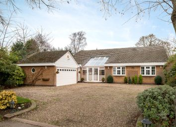Thumbnail 5 bed detached bungalow for sale in The Ridings, Rothley, Leicester