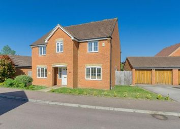 Thumbnail 4 bed detached house for sale in Spriggs Close, Clapham, Bedford, Bedfordshire