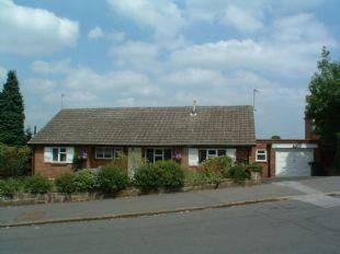 Thumbnail 3 bed detached bungalow to rent in Louvain Road, Derby