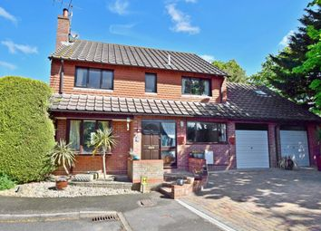 Thumbnail 5 bed detached house to rent in Prince William Close, Findon Valley, Worthing