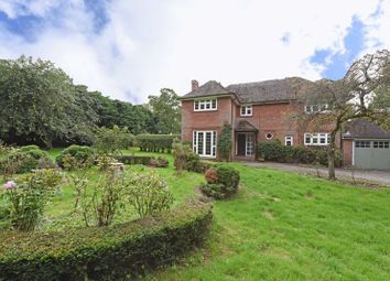Thumbnail 4 bed detached house to rent in Dummer, Basingstoke