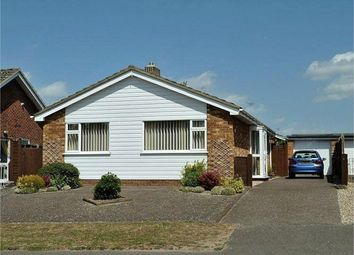 Thumbnail 3 bed detached bungalow to rent in Norfolk Avenue, Newmarket