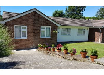 Thumbnail 3 bed semi-detached bungalow for sale in Rowan Way, Brighton
