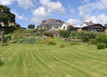 Thumbnail 3 bed detached bungalow for sale in New Street, Lampeter