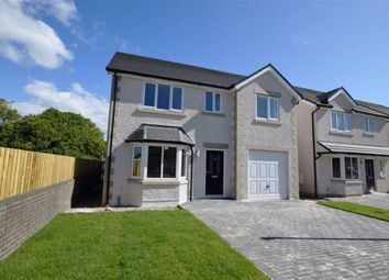 Thumbnail 3 bed detached house for sale in Cemetery Hill, Dalton In Furness, Cumbria