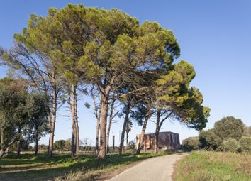 Thumbnail 3 bed farmhouse for sale in Sp71, Latiano, Brindisi, Puglia, Italy