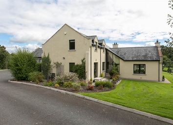 Thumbnail 5 bed detached house for sale in 8, Dublinhill Lane, Dromore