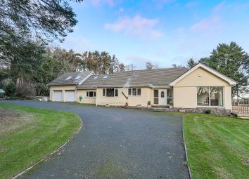 Thumbnail 4 bed detached bungalow for sale in Orrisdale Road, Ballasalla, Isle Of Man