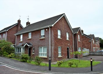 Thumbnail 5 bed detached house for sale in Stonebridge Meadows, Lisburn