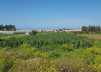 Thumbnail Land for sale in Paphos, Paphos, Cyprus