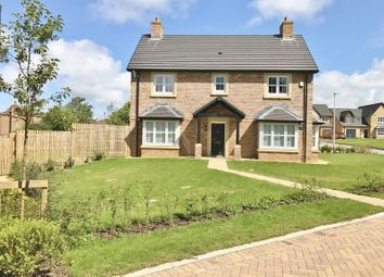 Thumbnail 4 bed detached house for sale in Oak Drive, Stainburn, Workington