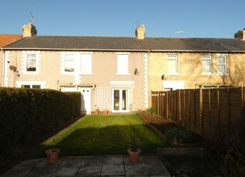 Thumbnail 3 bed terraced house to rent in Jersey Square, Lynemouth, Morpeth