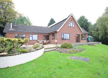 Thumbnail 5 bed detached house to rent in Springfield, Stanford Road, Great Witley