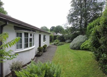 3 bed detached bungalow for sale in Lampeter Velfrey, Narberth, Pembrokeshire SA67