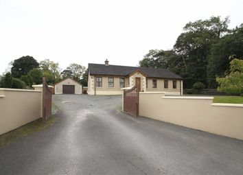 Thumbnail 3 bed detached bungalow for sale in Drumaness Road, Ballynahinch, Down