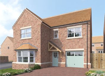 Thumbnail 4 bed detached house for sale in The Birch, Dishforth, Thirsk, North Yorkshire