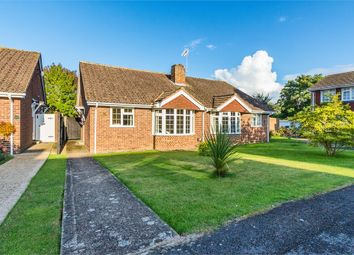 Thumbnail 2 bed semi-detached bungalow to rent in Beverley Gardens, Maidenhead, Berkshire