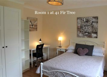 Room to rent in Room 1, 41 Fir Tree Road, Guildford GU1
