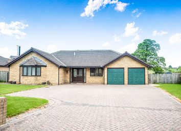 Thumbnail 3 bed bungalow for sale in Meadowcroft Park, Thropton, Morpeth