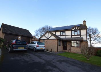 Thumbnail 4 bed detached house for sale in Beech Park, Crediton, Devon