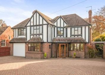 Thumbnail 4 bed property to rent in Fir Tree Road, Epsom