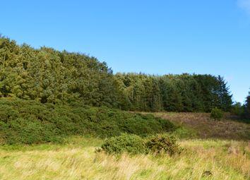 Thumbnail Land for sale in Kirkoswald, Maybole