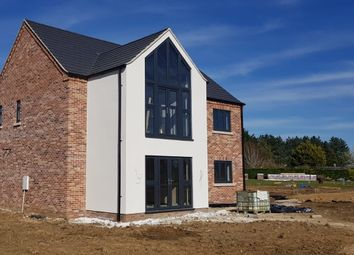 Thumbnail 4 bed detached house for sale in Scotts Lane, Brookville, Thetford