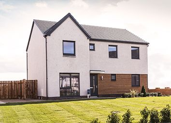 "Thumbnail 4 bedroom detached house for sale in ""Hollandswood"" at Whitehills Gardens, Cove, Aberdeen"