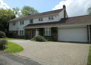 Thumbnail 4 bed detached house to rent in Oakwood, Berkhamsted