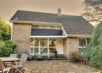 Thumbnail 4 bedroom detached house for sale in High Green, Norwich