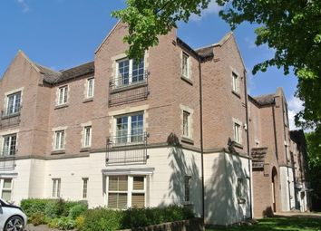 Thumbnail 1 bed flat to rent in The Spinney, Sheffield