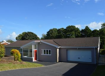 Thumbnail 4 bed detached house to rent in Meadow Rise, Derwen Fawr, Sketty, Swansea