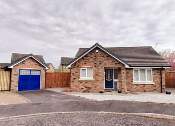 Thumbnail 2 bed detached bungalow for sale in 10 Slater Place, Heathhall, Dumfries