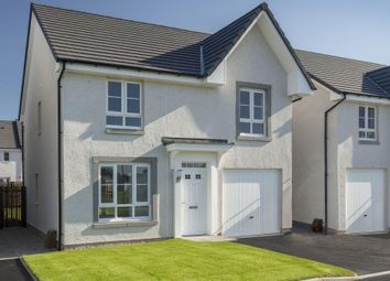 "Thumbnail 4 bedroom detached house for sale in ""Crichton"" at Whitehill Street, Newcraighall, Musselburgh"