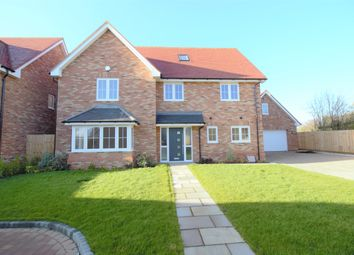 Thumbnail 6 bed detached house for sale in Grays Close, Clifton, Shefford, Beds
