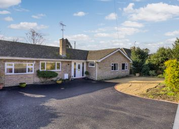 Thumbnail 3 bed detached bungalow for sale in Mildenhall, Bury St. Edmunds, Suffolk
