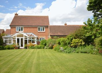 Thumbnail 4 bed detached house for sale in Northlands, North Shields