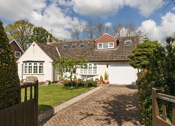 Thumbnail 4 bed detached house for sale in Summerhill, Long Rigg, Riding Mill, Northumberland