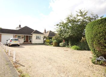 Thumbnail 3 bed detached bungalow for sale in North Hill, Little Baddow
