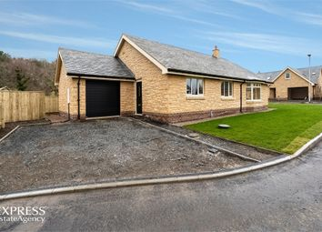 Thumbnail 3 bedroom detached bungalow for sale in Burnside, Thropton, Morpeth, Northumberland