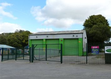 Thumbnail Light industrial for sale in Unit 1B, Narberth Bridge Business Park, Narberth, Pembrokeshire