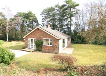 Thumbnail 3 bed detached bungalow to rent in Shelley Lane, Ower, Romsey