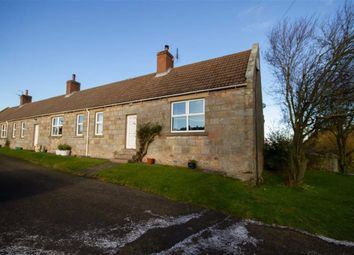 Thumbnail 3 bedroom cottage to rent in Norham, Berwick-Upon-Tweed