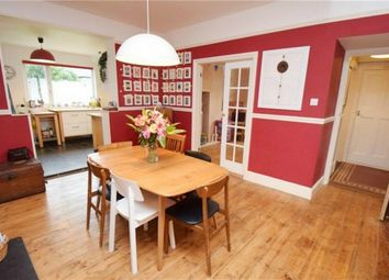 Thumbnail 6 bed semi-detached house to rent in Dracaena Avenue, Falmouth