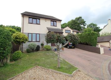 Thumbnail 4 bed detached house for sale in Higher Brook Park, Ivybridge