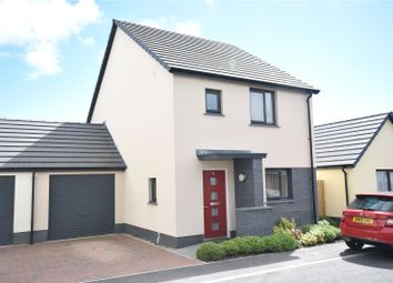 Thumbnail 3 bed detached house for sale in Waterloo Gardens, Torrington