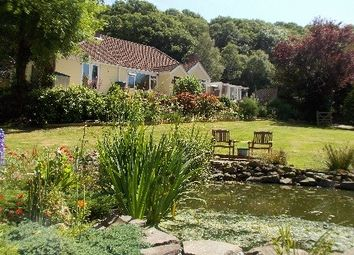 Thumbnail Leisure/hospitality for sale in Lapford, Devon