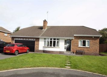 Thumbnail 2 bedroom detached bungalow for sale in Kinedale Park, Ballynahinch, Down
