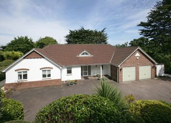 Thumbnail 4 bedroom detached bungalow for sale in Lydwell Road, Torquay